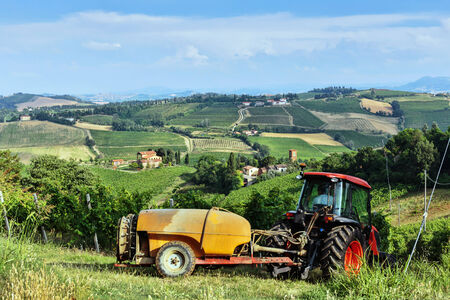 agriturismo: Fields full of vines and red tractor in Tuscany