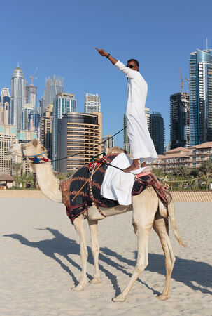 DUBAI, UAE - NOVEMBER 11: High rise buildings and camel on the beach in Dubai Marina, on November 11, 2013, Dubai, UAE. In the city of artificial channel length of 3 kilometers along the Persian Gulf.