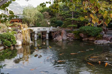 ponte giapponese: Giardino giapponese a Monte Carlo, Monaco Archivio Fotografico
