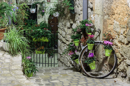 cobbled: Narrow cobbled street with flowers in the old village Tourrettes-sur-Loup at night, France.
