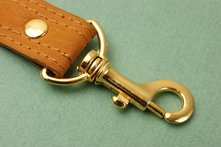 leather strap with carabiner on a green background Stock Photo