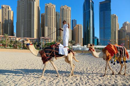 high rise buildings: DUBAI, UAE - NOVEMBER 11, 2013: High rise buildings and Arab man sitting on a camel