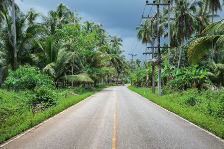 tropics: Highway in the tropics of Asia