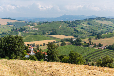 italian landscape: Typical Italian landscape in Tuscany Stock Photo