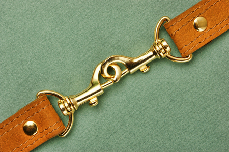 waistband: leather strap with carabiner on a green background Stock Photo
