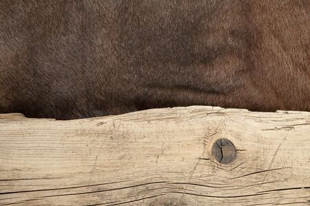 dilapidated: Old dilapidated boards and reindeer fur