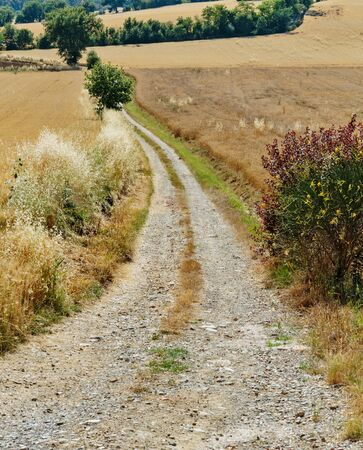 orcia: deserted country road in Italy