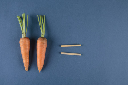 compute: carrots and school mathematics with math problems