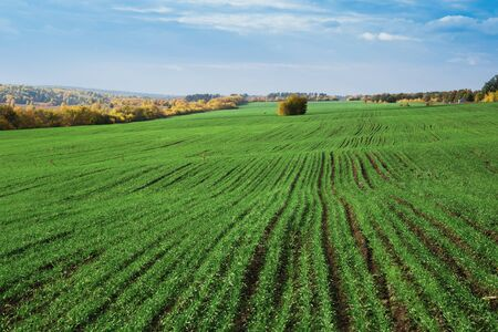 agriculture: Agricultural fields and meadows in Europe Stock Photo