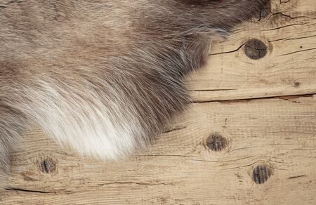 hides: Old dilapidated boards and reindeer fur