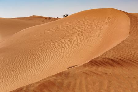 arabic desert: Red desert sand in Dubai