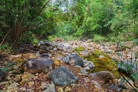 south east: Stream in the tropical jungles of South East Asia