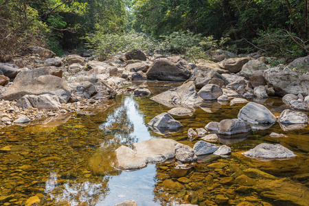 rivulet: Stream in the tropical jungles of South East Asia