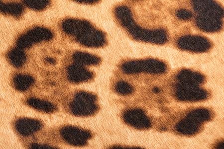 artificial hair: Faux leopard fur texture background