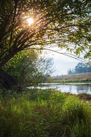 nenuphar: Pond in the countryside in autumn at sunset
