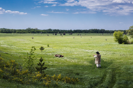 herdsman: Shepherd and flock of sheep on a green pasture Stock Photo