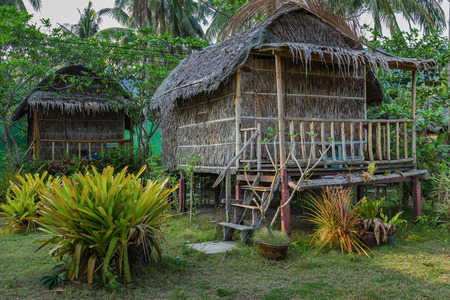 asian house plants: Travel cottages in the tropics of Thailand