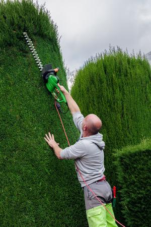 mows: GOURDON, FRANCE - OCTOBER 31, 2014: Gardener mows bushes Editorial