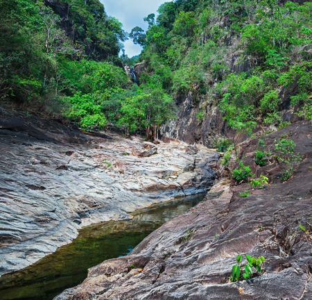 south east asia: Stream in the tropical jungles of South East Asia
