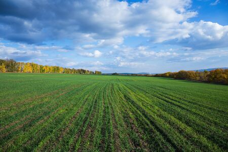 Agricultural fields and meadows in Europe Stock Photo