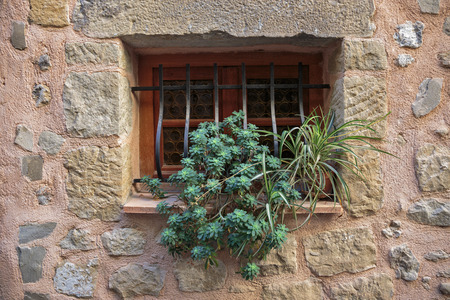 Window in an old house with flower