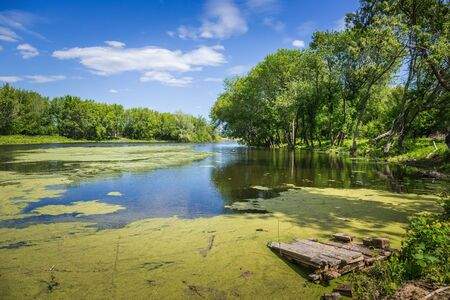 backwater: marshy lake in the countryside Stock Photo