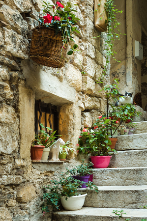 Narrow cobbled street with flowers in the old village Tourrettes-sur-Loup , France. Stock Photo