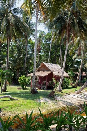 Hut in a tropical palm grove