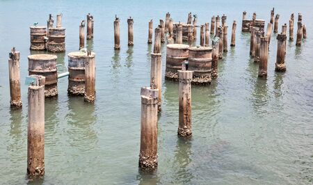 Abandoned pilings from an old dock in the sea Banco de Imagens