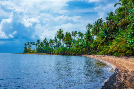palm: Tropical sand beach on an island in Thailand Stock Photo