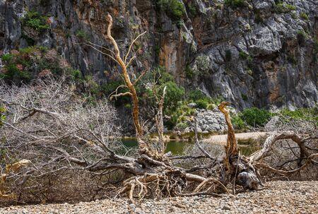 Canyon de la Calobra in the mountains of Tramontana on the island of Mallorca