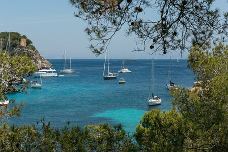 Cozy bay with a sandy beach Caló dels Reis