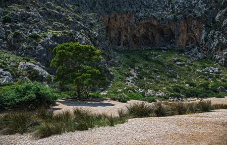 Canyon de la Calobra in the mountains of Tramontana, Mallorca 版權商用圖片
