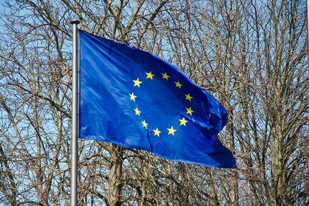 De Europese vlag tegen de naakte bomen Stockfoto