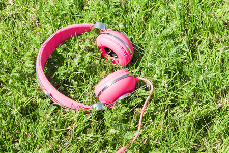 sward: Bright colored lilac headphones on the natural green sward background