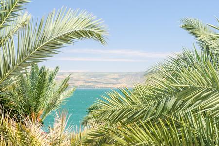 Lake Kinneret of Zee van Galilea in het kader van palmbladeren met duidelijke blauwe hemel