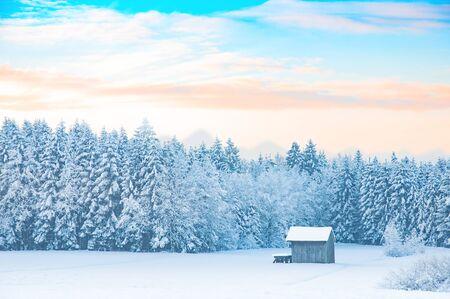 Early morning winter rural landscape with snow-covered forest and pastel shades colored dawn sunrise sky Stock Photo