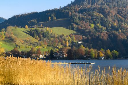 Autumn landscape with township in Upper Bavaria near mountain lake with pier and dry reed