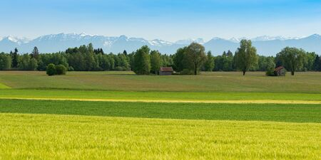 Panoramic scenic Alpine view with fresh spring meadows and snowy mountain peaks in Bavarian farm region Standard-Bild