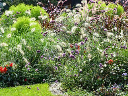 Ornamental blossoming flowerbed in autumn flower garden or urban park