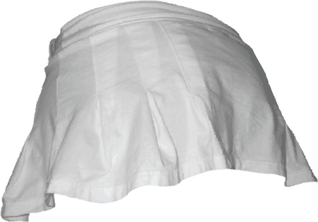 mini skirt: Illustration of a sexy mini skirt