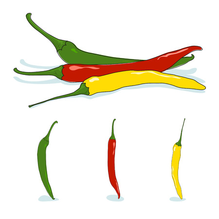 cayenne: Red, green and yellow  hot chili pepper, cayenne pepper or guinea spice, cow-horn pepper, aleva, bird pepper,pepperoni, vector illustration