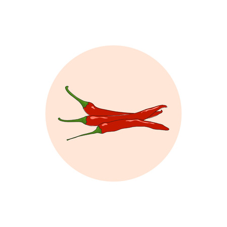 cayenne: Icon red hot chili pepper, icon cayenne pepper or guinea spice, cow-horn pepper, aleva, bird pepper, vector illustration