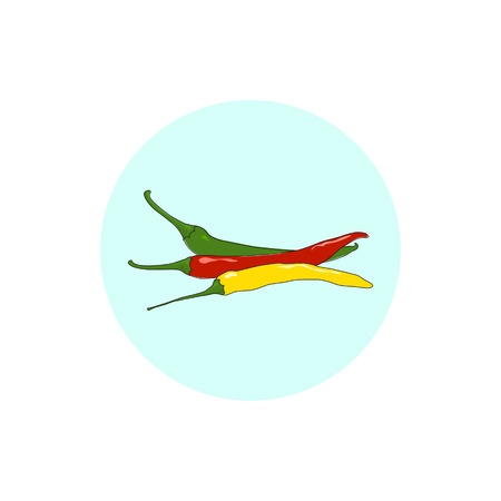 cayenne pepper: Icon red, green and yellow  hot chili pepper, icon cayenne pepper or guinea spice, cow-horn pepper, aleva, bird pepper,pepperoni, vector illustration Illustration