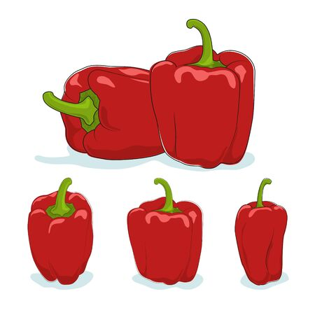 peper: Red bell pepper,three kinds of sweet pepper, capsicum on a white background, vector illustration Illustration