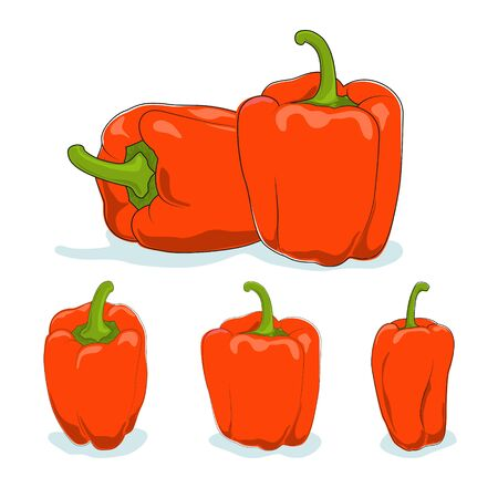 capsicum: Orange bell pepper,three kinds of sweet pepper, capsicum on a white background, vector illustration