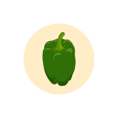 peper: Icon green bell pepper,icon sweet pepper, icon capsicum , vector illustration Illustration
