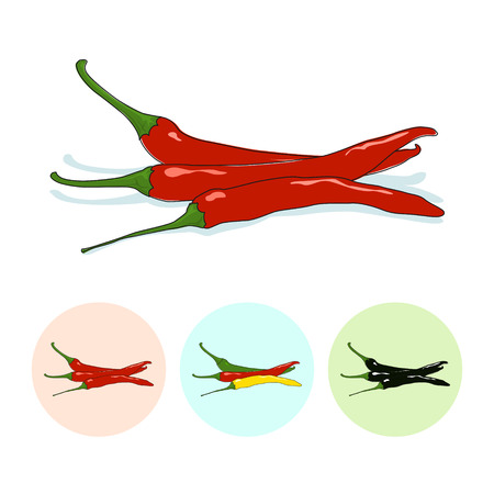 capsaicin: Red hot chili pepper  on white background,set of three round colorful icons