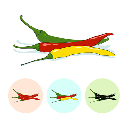 capsaicin: Red and green and yellow hot chili pepper  on white background,set of three round colorful icons