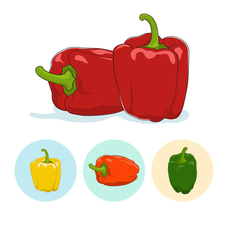 flavoring: Red bell pepper  on white background,set of three round colorful icons, yellow,orange and green sweet pepper, icon capsicums ,vector illustration Illustration
